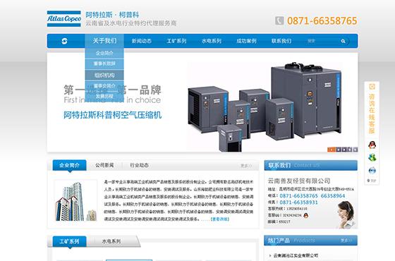 云南善友经贸有限公司网站设计