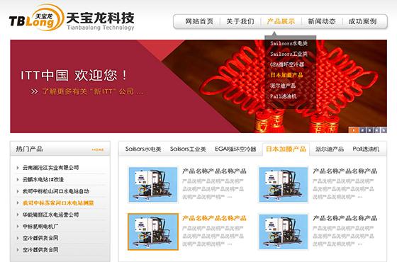 昆明天宝龙科技有限公司网站设计