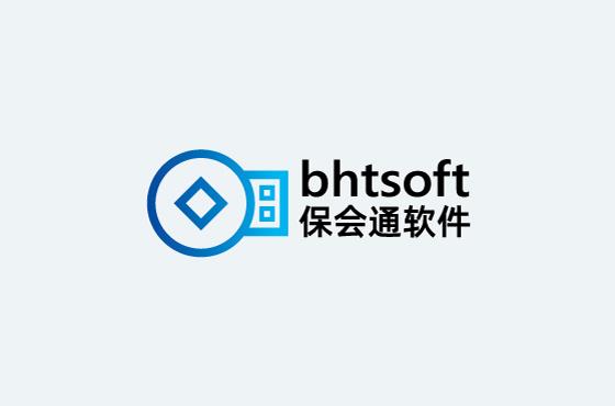 云南保会通软件公司LOGOVI设计